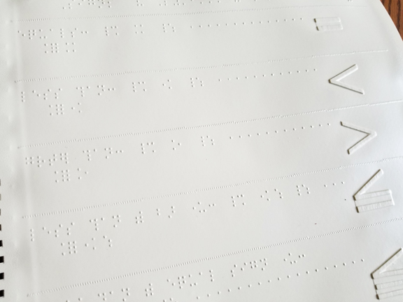 shows the tactile drawings and braille entries for equal sign, greater than, less than, etc.