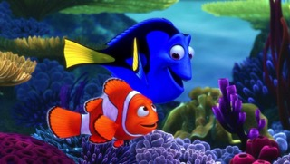 Image from Finding Dory